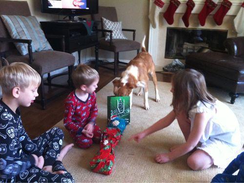 Aspen's First Christmas